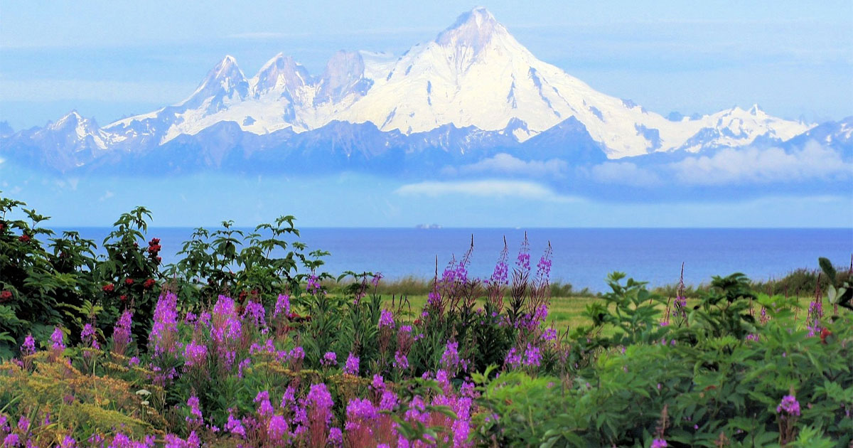 Visiting Alaska By Season