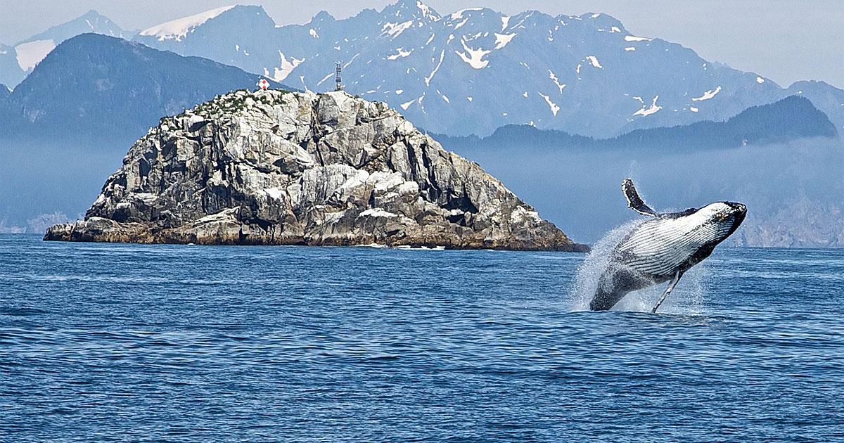 Top Alaska Attractions