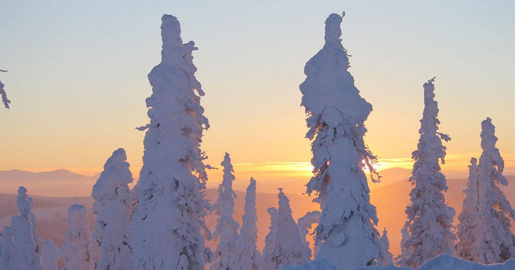 Sunset Ice Alaska Trees